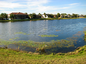 Formosa Gardens Real Estate For Sale Orlando Kissimmee